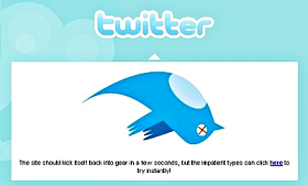 Twitter Bird Flies No More
